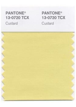 Pantone custard